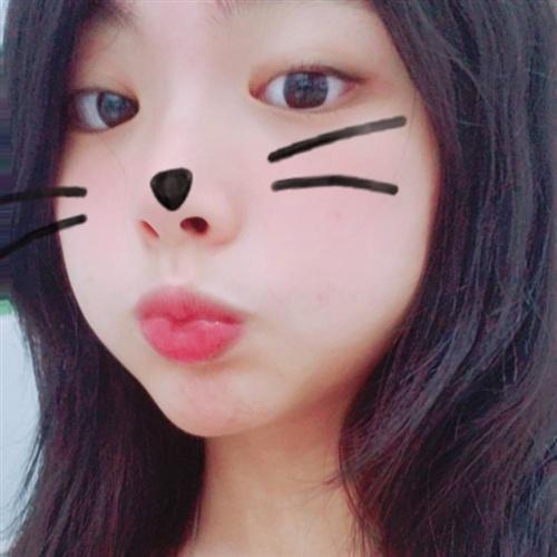 [ 櫻花喵 ] 介紹